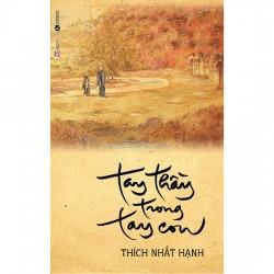 Tay Thầy Trong Tay Con - Thích Nhất Hạnh (Thái Hà Books)